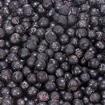 AmbeRye Frozen Black Chockberry